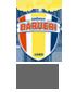 Logo_gremio-barueri_85_70